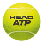 توپ تنیس هد - Head ATP Gold 4 Ball