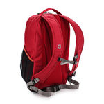 کوله پشتی 20 لیتری سالومون - Salomon Bag Wanderer 20 Red Chine/Gecko Green