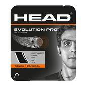 زه راکت اسکواش هد - Head Evolution Pro Squash Set