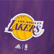 شورت تیم بسکتبال لس آنجلس لیکرز آدیداس - Adidas LA Lakers Basketball Shorts