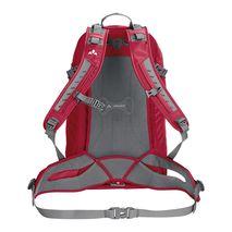 کوله پشتی 4+30 لیتری وئود - Vaude Wizard 30+4 L Backpack