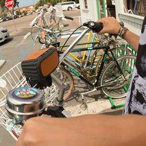 پایه اسپیکر دوچرخه اکو اکس گیر - Ecoxgear  Bicycle Handle Bar Mount